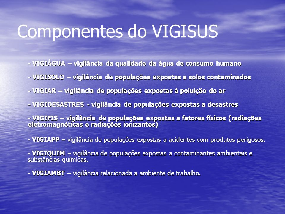 Componentes do VIGISUS