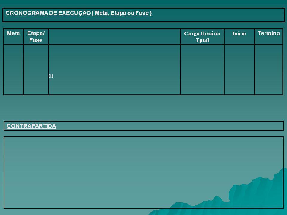 CRONOGRAMA DE EXECUÇÃO ( Meta, Etapa ou Fase ) Meta Etapa/Fase