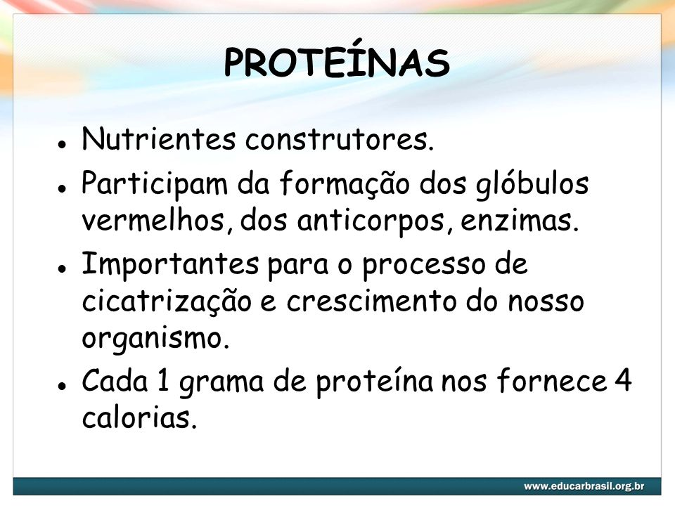 PROTEÍNAS Nutrientes construtores.