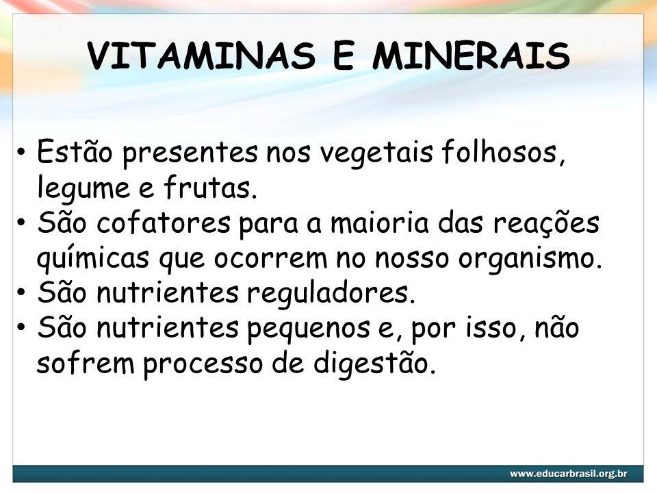 VITAMINAS E MINERAIS Estão presentes nos vegetais folhosos, legume e frutas.