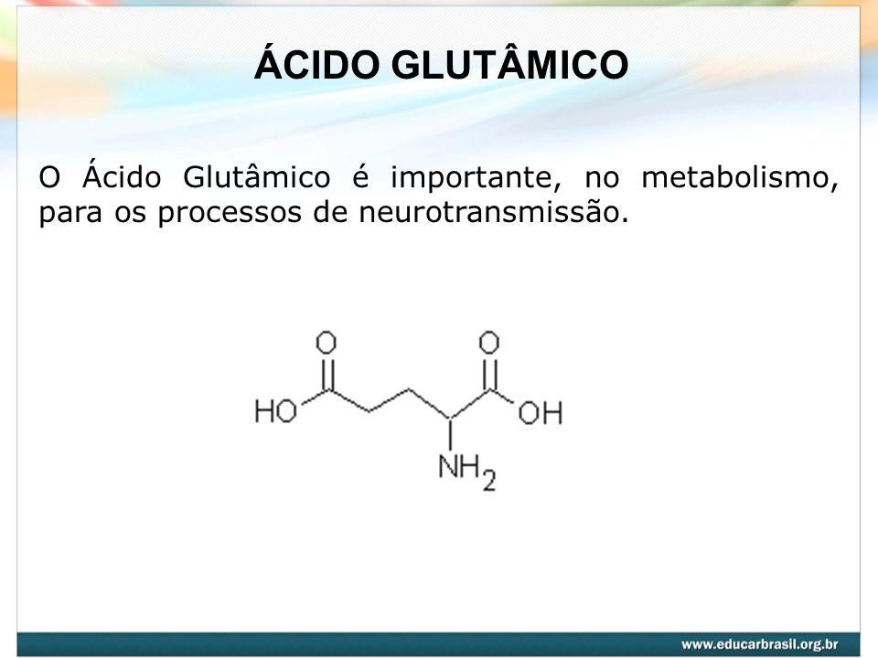 ÁCIDO GLUTÂMICO O Ácido Glutâmico é importante, no metabolismo, para os processos de neurotransmissão.