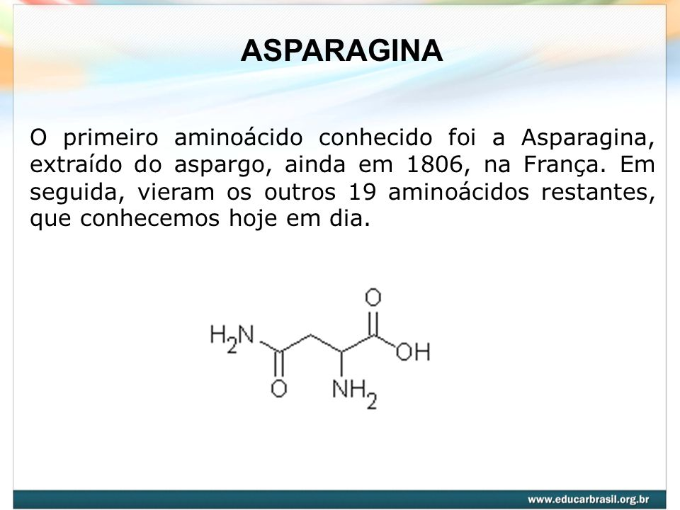ASPARAGINA