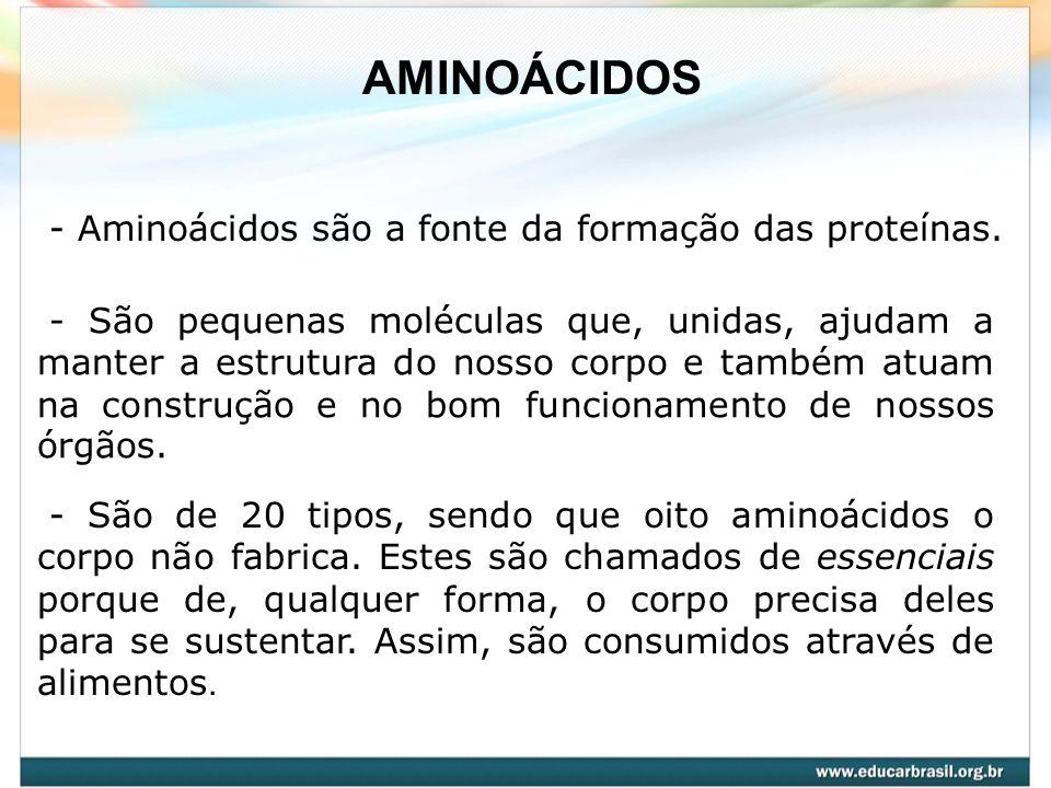 AMINOÁCIDOS - Aminoácidos são a fonte da formação das proteínas.