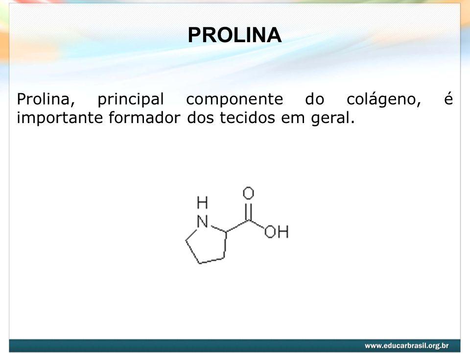 PROLINA Prolina, principal componente do colágeno, é importante formador dos tecidos em geral.
