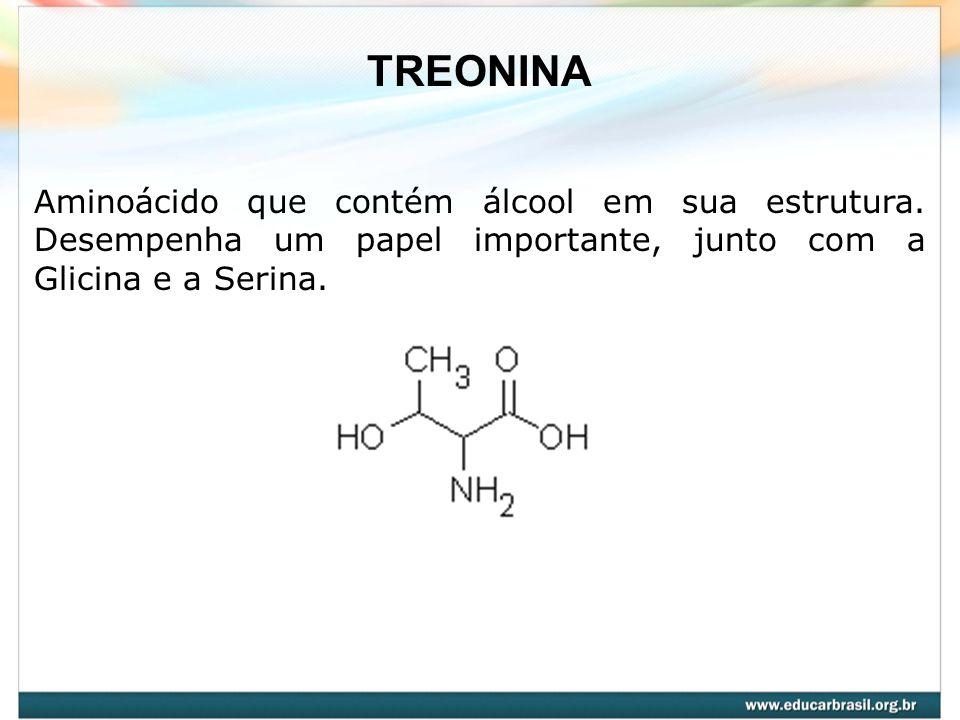 TREONINA Aminoácido que contém álcool em sua estrutura.