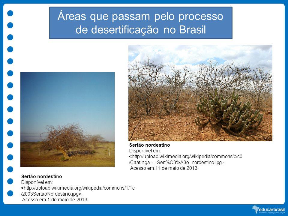 Áreas que passam pelo processo de desertificação no Brasil