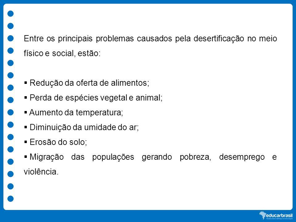 Entre os principais problemas causados pela desertificação no meio físico e social, estão: