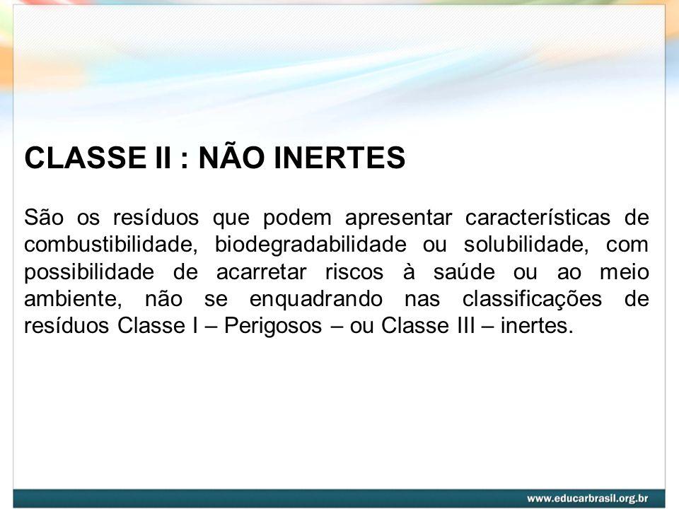 CLASSE II : NÃO INERTES