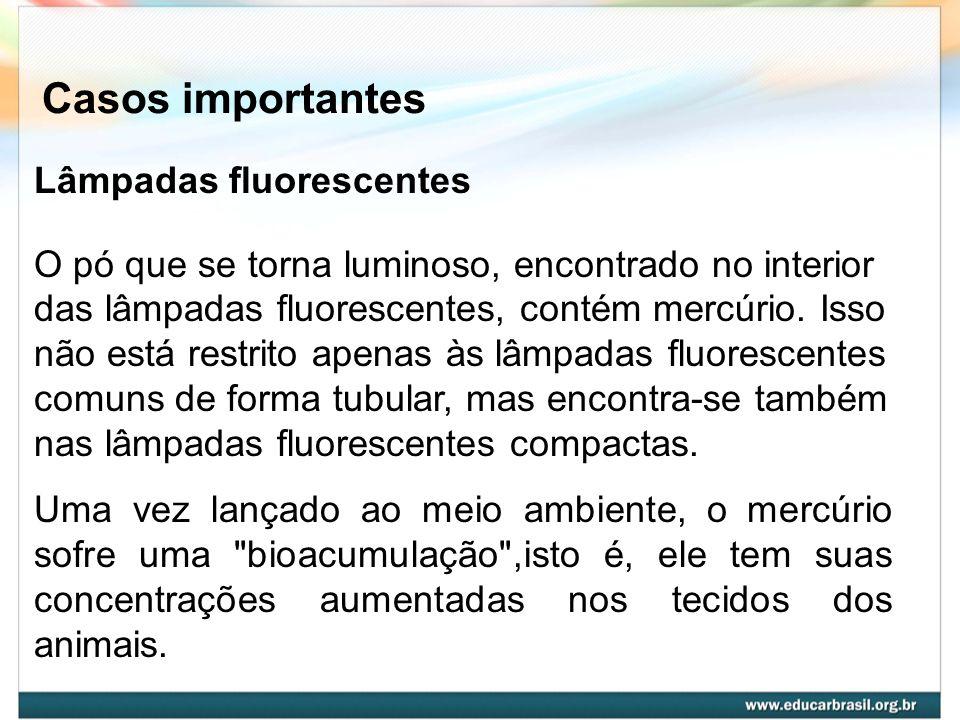 Casos importantes Lâmpadas fluorescentes