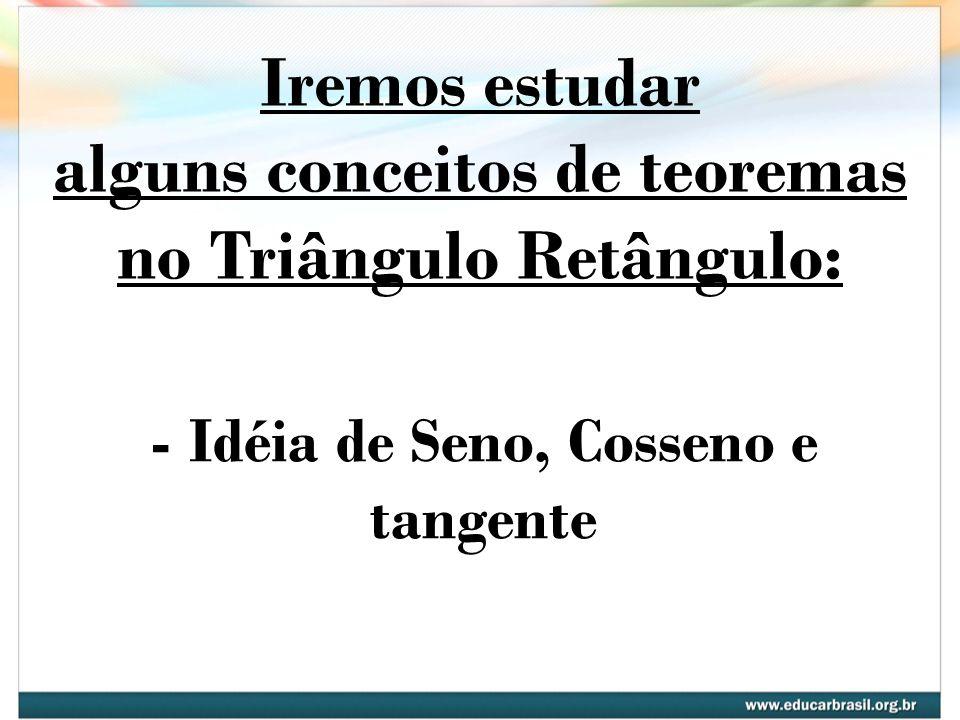 Iremos estudar alguns conceitos de teoremas no Triângulo Retângulo: