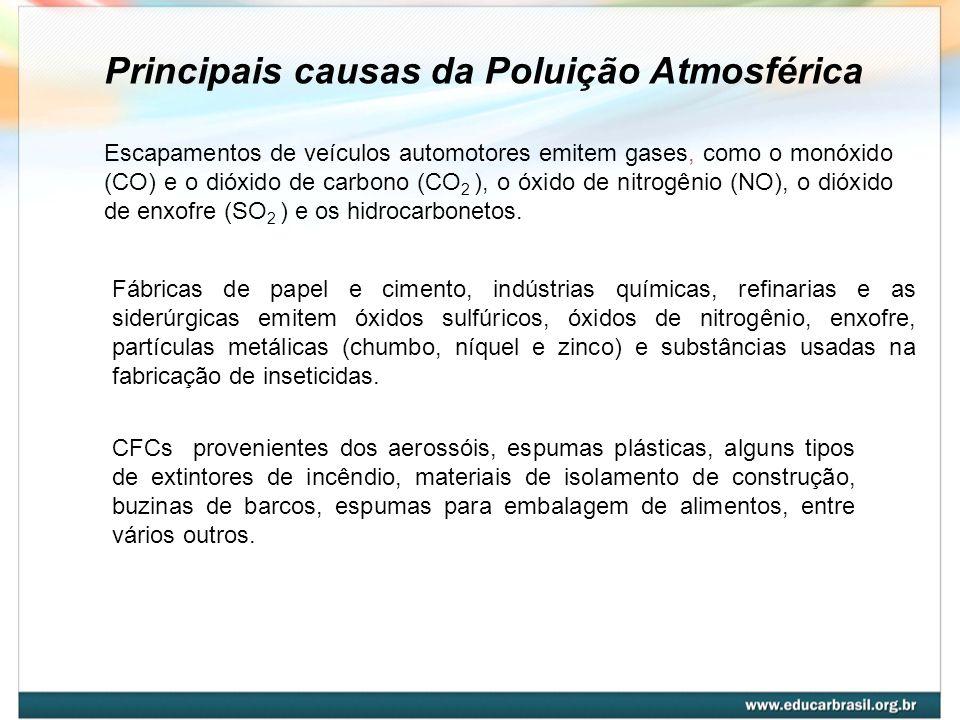 Principais causas da Poluição Atmosférica