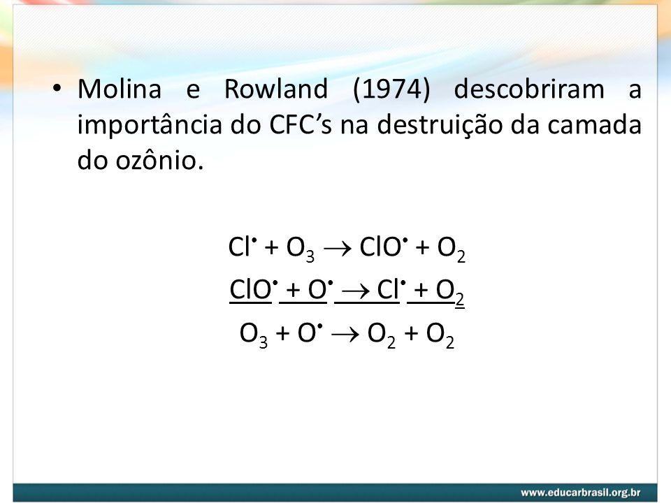 Molina e Rowland (1974) descobriram a importância do CFC's na destruição da camada do ozônio.