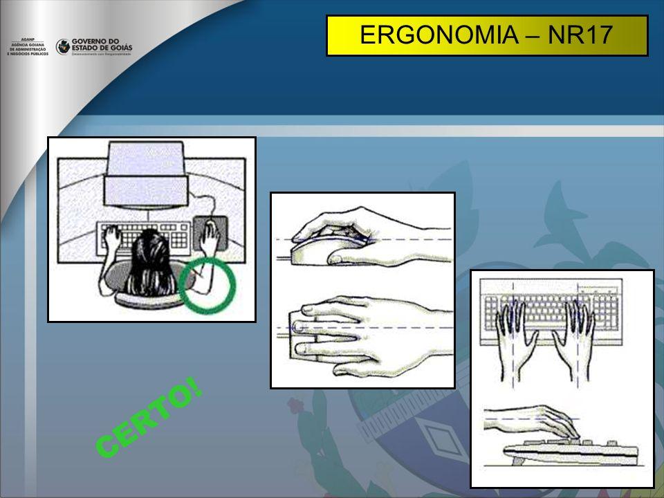 ERGONOMIA – NR17 CERTO!