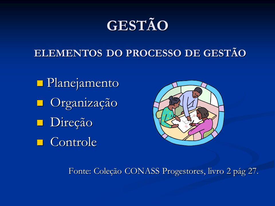 ELEMENTOS DO PROCESSO DE GESTÃO
