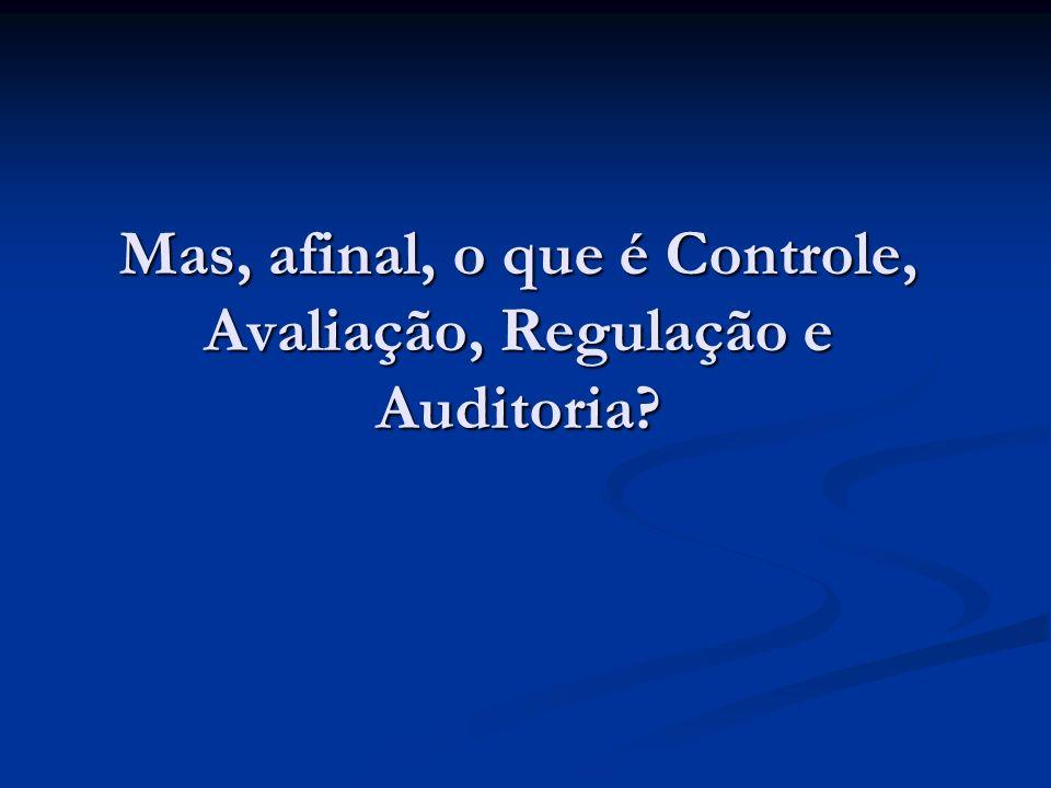 Mas, afinal, o que é Controle, Avaliação, Regulação e Auditoria