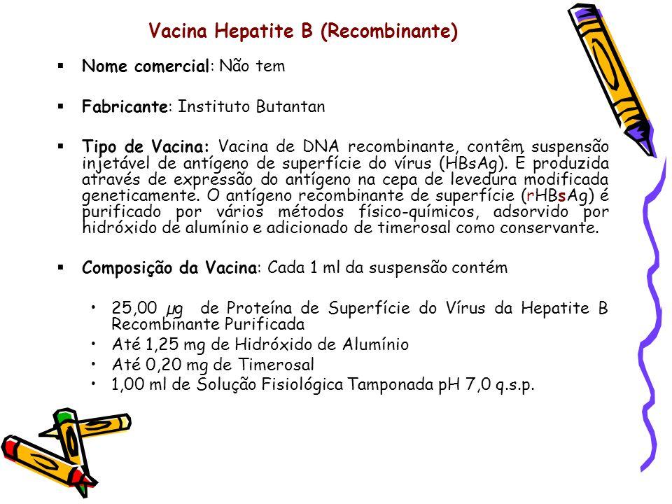 Vacina Hepatite B (Recombinante)