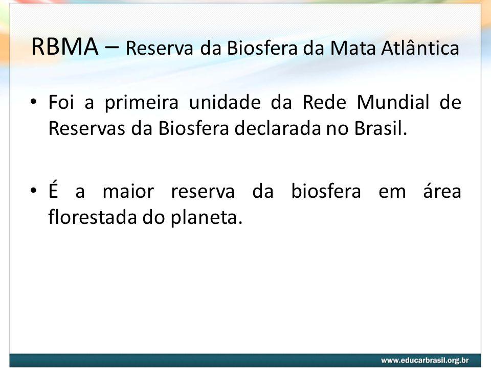 RBMA – Reserva da Biosfera da Mata Atlântica