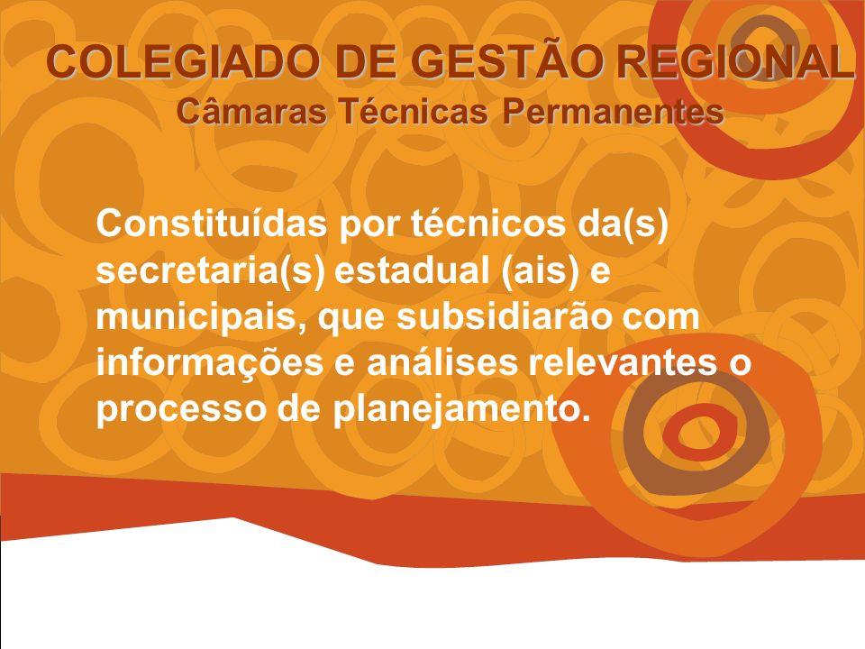 COLEGIADO DE GESTÃO REGIONAL Câmaras Técnicas Permanentes