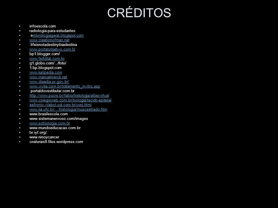 Creditos Biologia Usal - simulador prestamos cuotas trimestrales