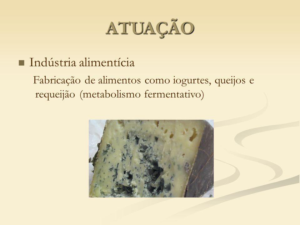 ATUAÇÃO Indústria alimentícia