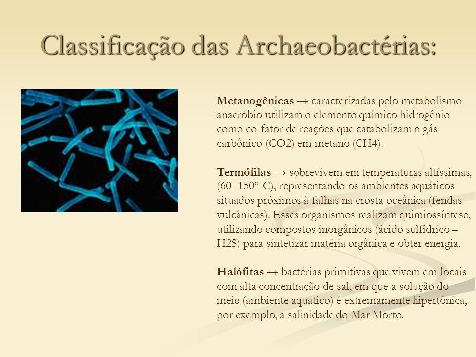 Classificação das Archaeobactérias: