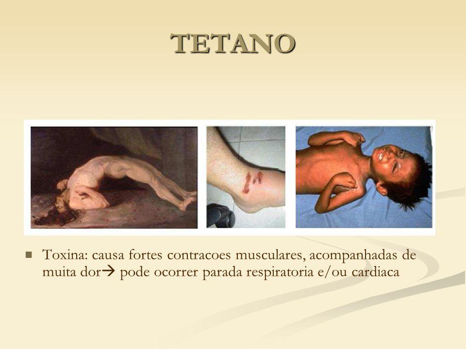 TETANO Toxina: causa fortes contracoes musculares, acompanhadas de muita dor pode ocorrer parada respiratoria e/ou cardiaca.