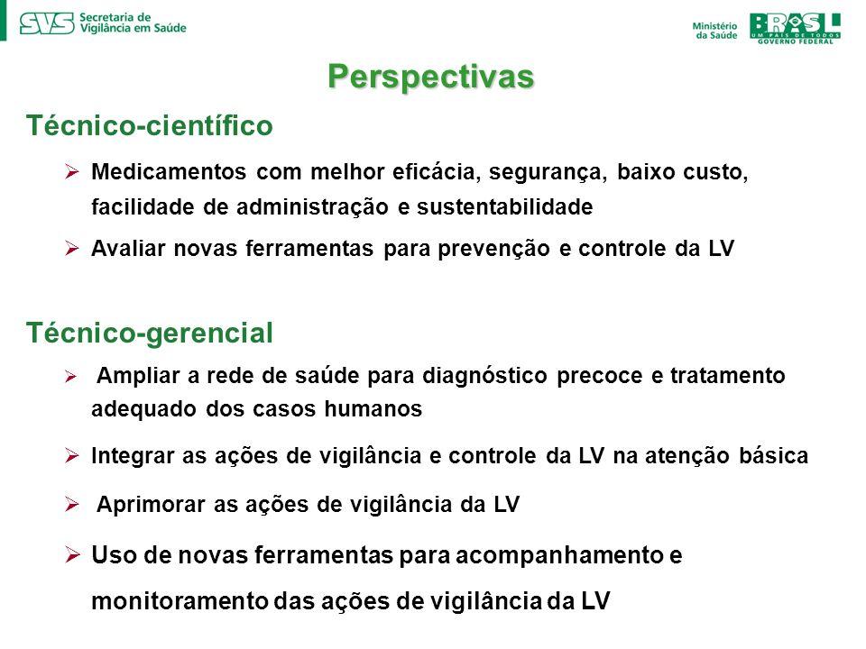 Perspectivas Técnico-científico Técnico-gerencial