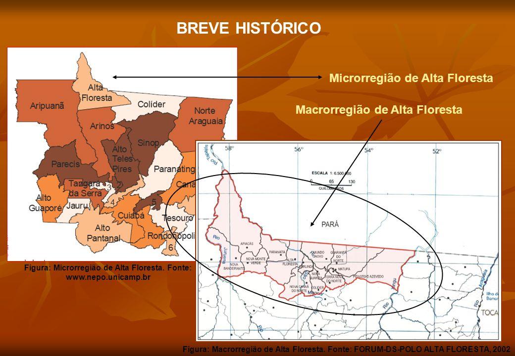 BREVE HISTÓRICO Microrregião de Alta Floresta