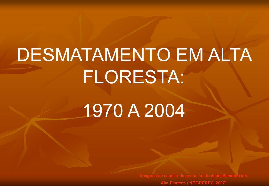 DESMATAMENTO EM ALTA FLORESTA: 1970 A 2004