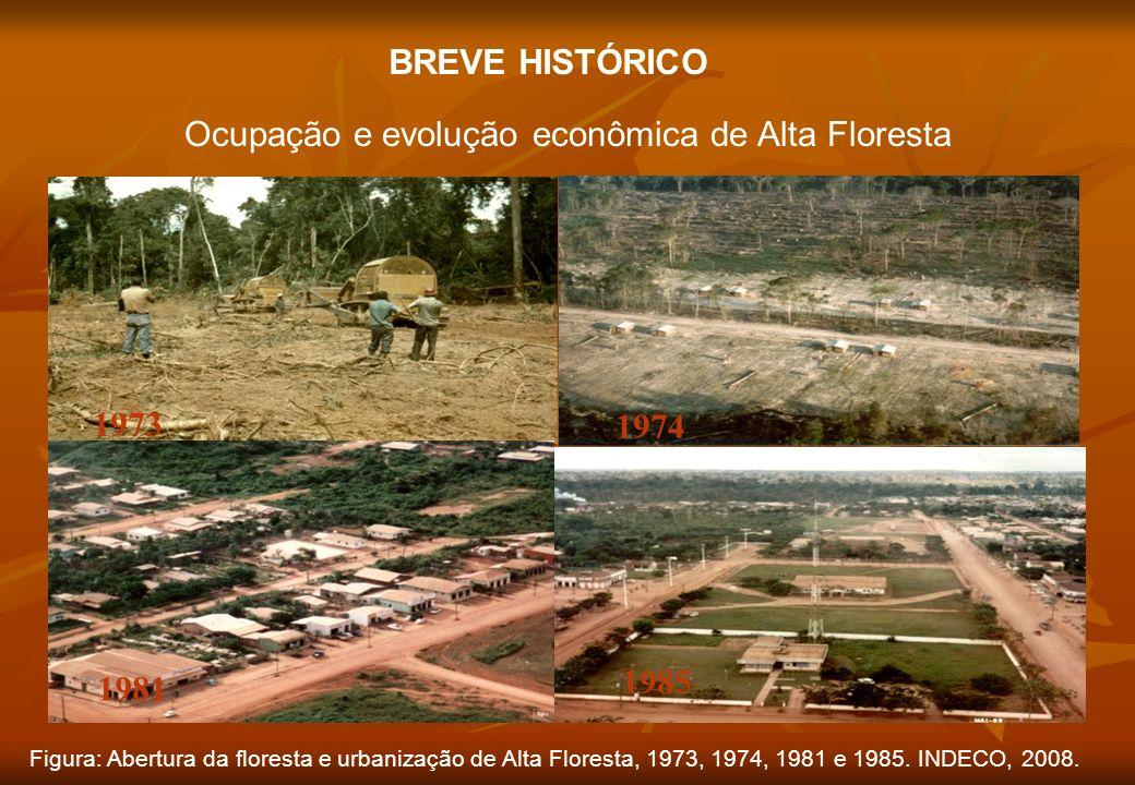 Ocupação e evolução econômica de Alta Floresta