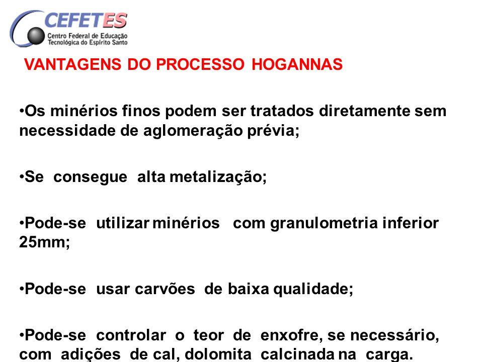 VANTAGENS DO PROCESSO HOGANNAS