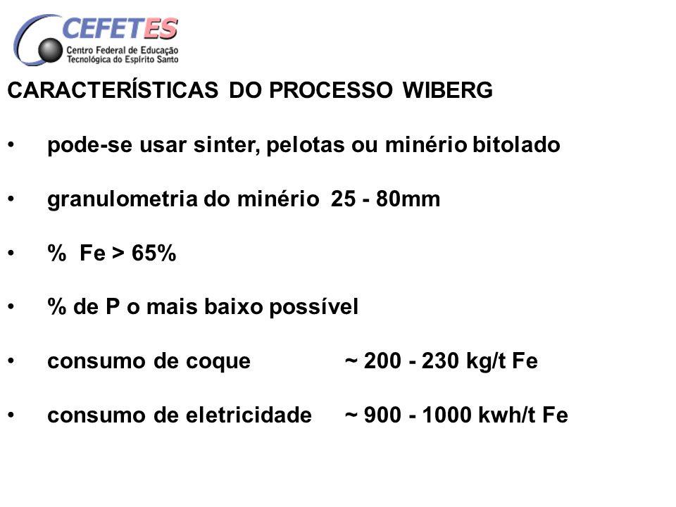 CARACTERÍSTICAS DO PROCESSO WIBERG