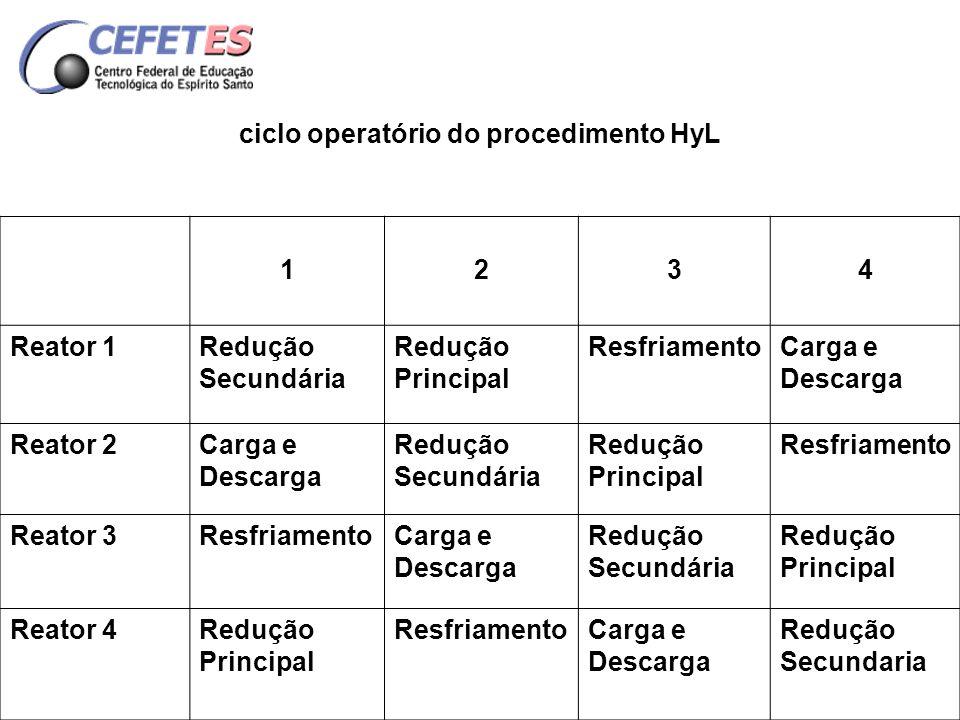 ciclo operatório do procedimento HyL