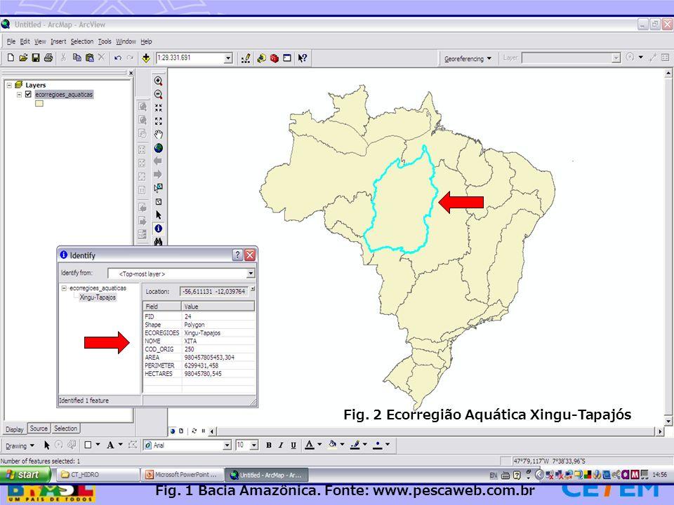 Fig. 1 Bacia Amazônica. Fonte: www.pescaweb.com.br