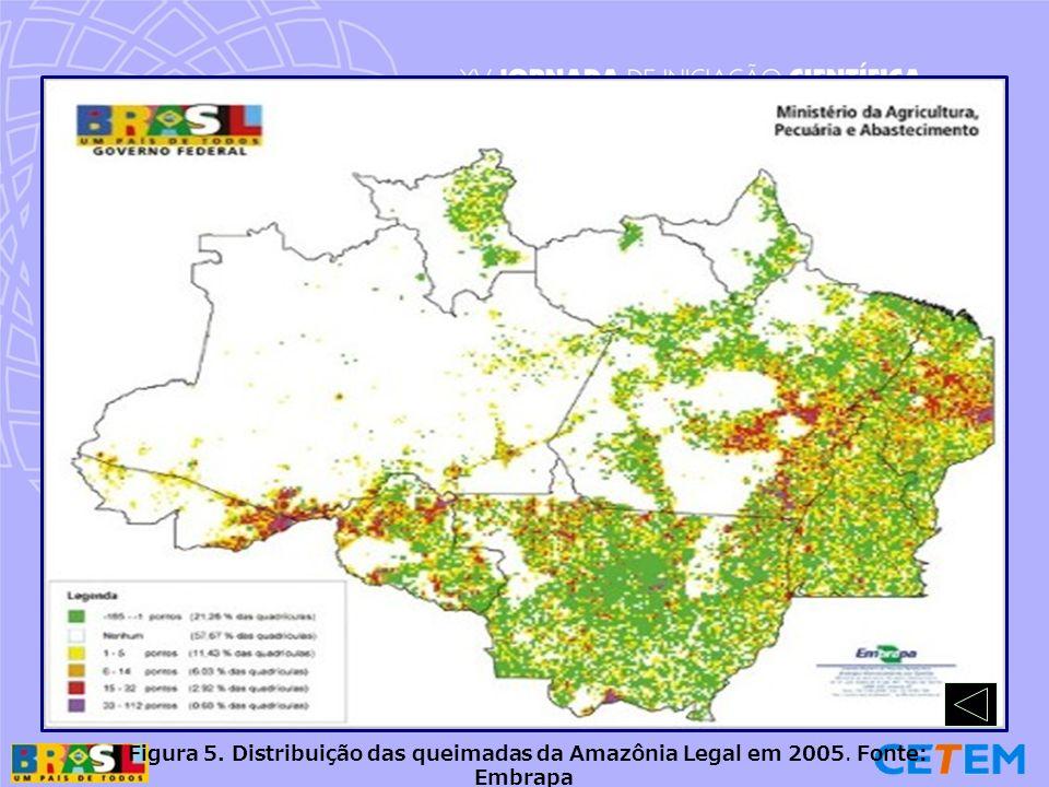 Figura 5. Distribuição das queimadas da Amazônia Legal em 2005