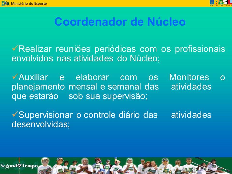 Coordenador de NúcleoRealizar reuniões periódicas com os profissionais envolvidos nas atividades do Núcleo;