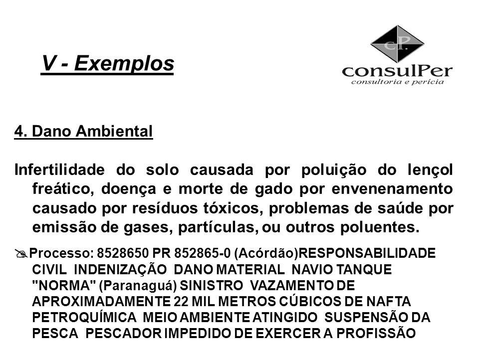 V - Exemplos 4. Dano Ambiental