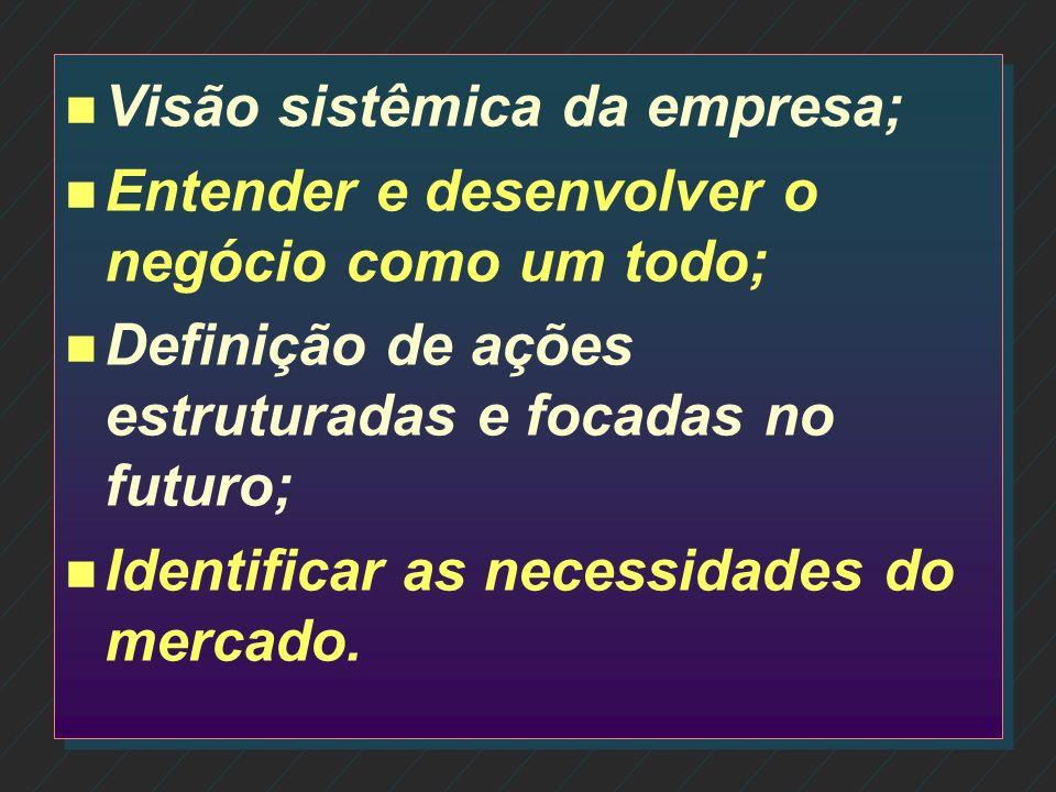 Visão sistêmica da empresa;