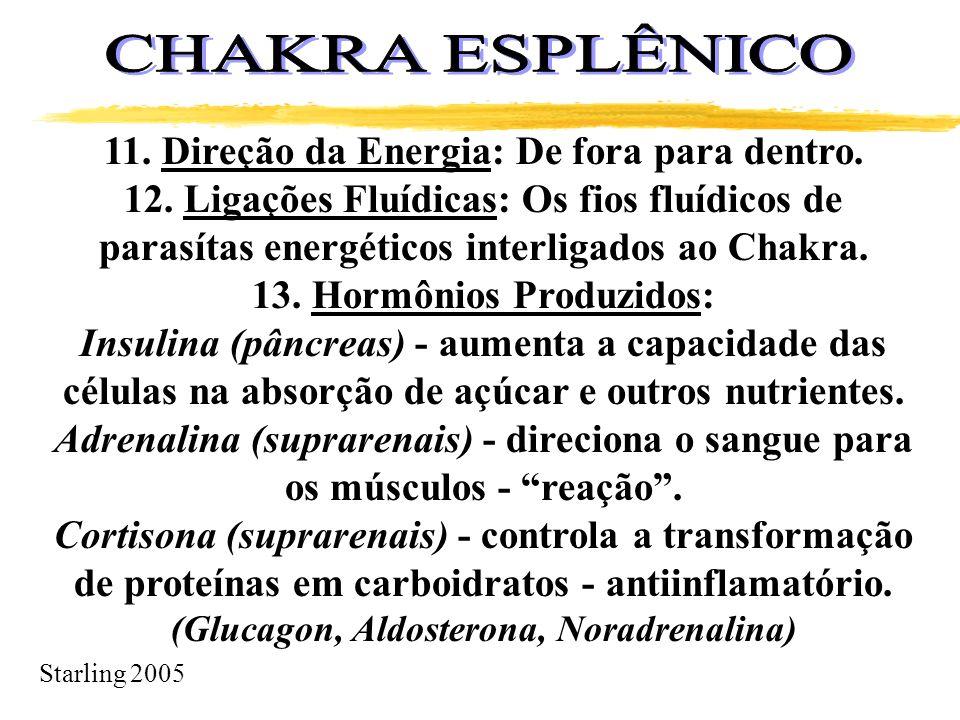 CHAKRA ESPLÊNICO 11. Direção da Energia: De fora para dentro.
