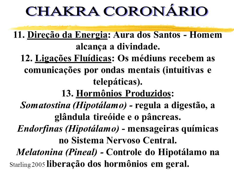 CHAKRA CORONÁRIO 11. Direção da Energia: Aura dos Santos - Homem alcança a divindade.