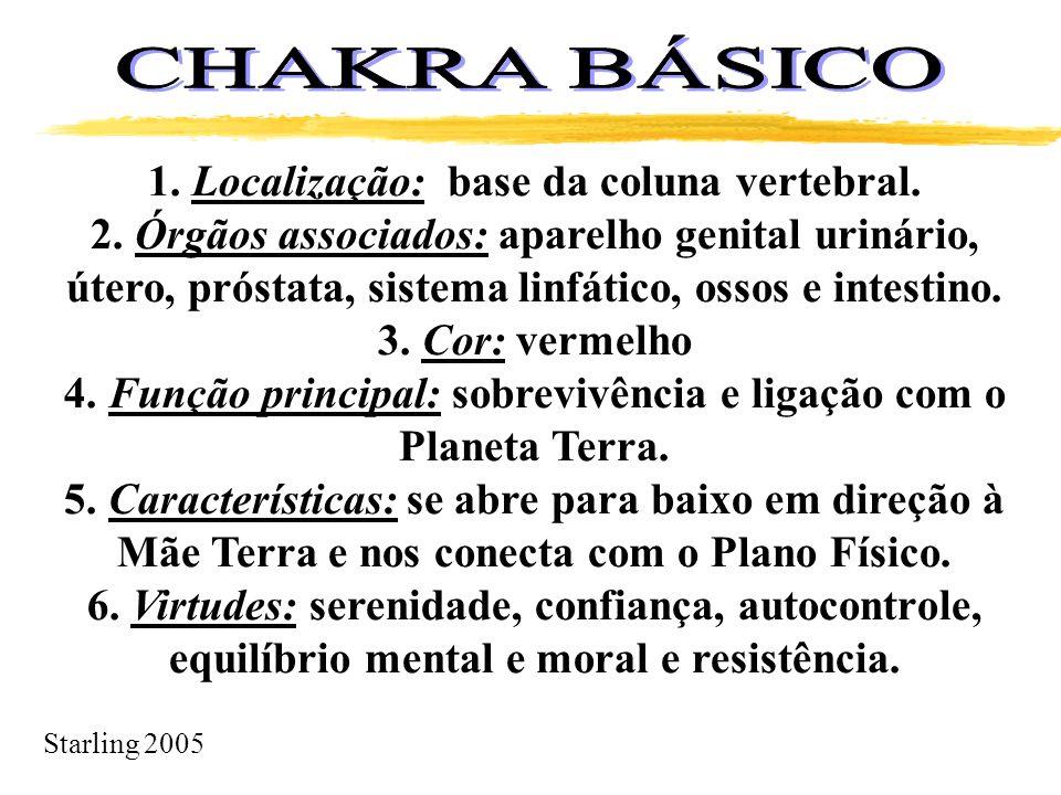 CHAKRA BÁSICO 1. Localização: base da coluna vertebral.