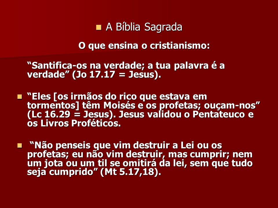 A Bíblia Sagrada O que ensina o cristianismo: