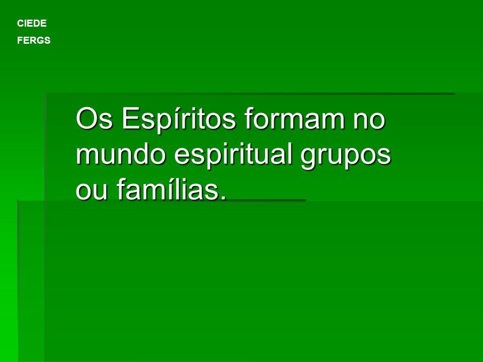 Os Espíritos formam no mundo espiritual grupos ou famílias.