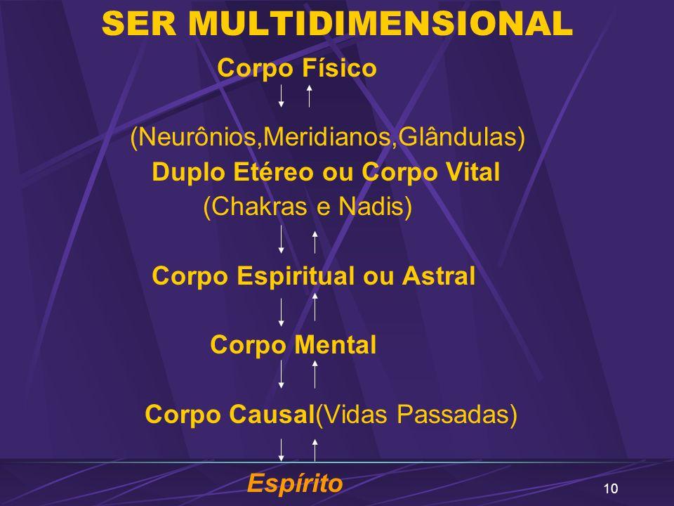 SER MULTIDIMENSIONAL Corpo Físico (Neurônios,Meridianos,Glândulas)
