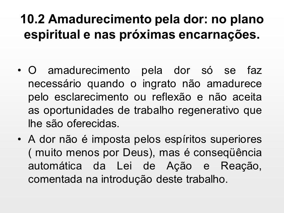 10.2 Amadurecimento pela dor: no plano espiritual e nas próximas encarnações.