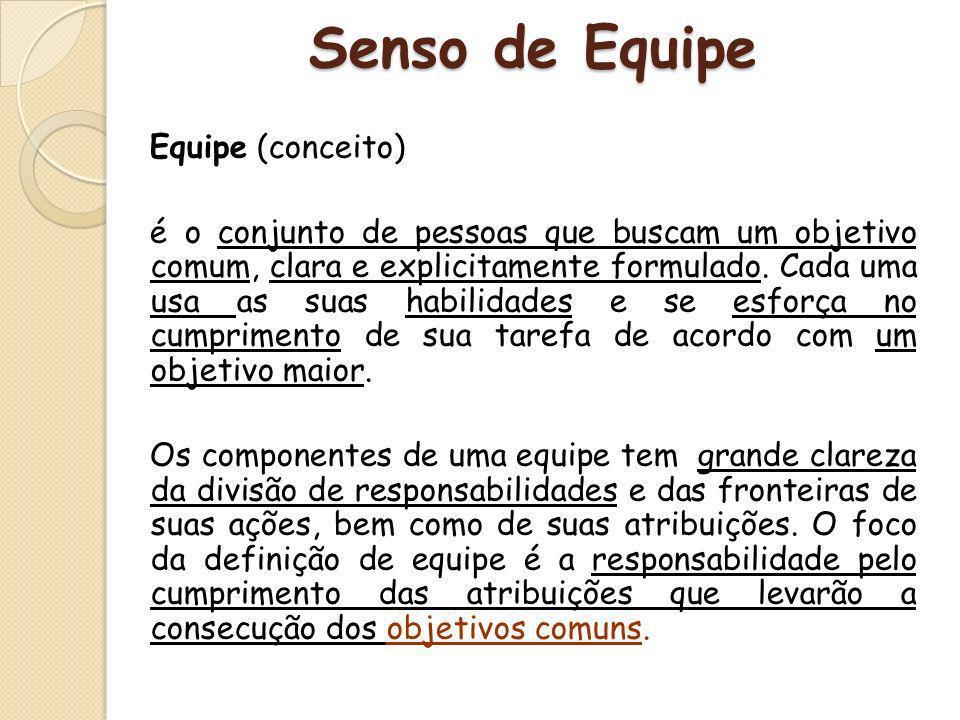 Senso de Equipe Equipe (conceito)