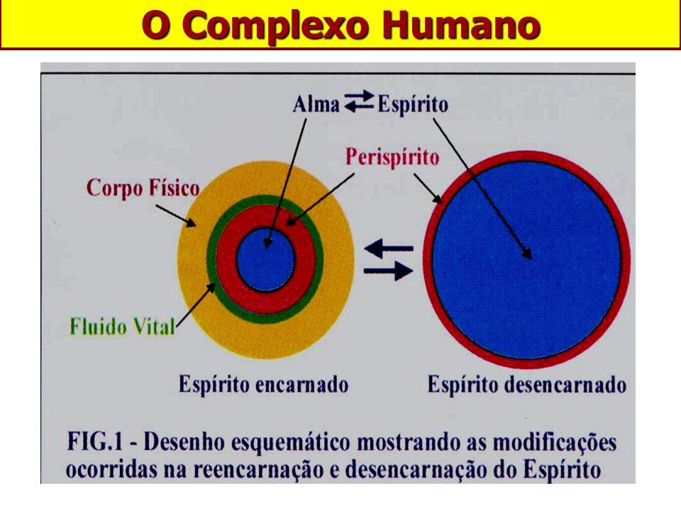 O Complexo Humano