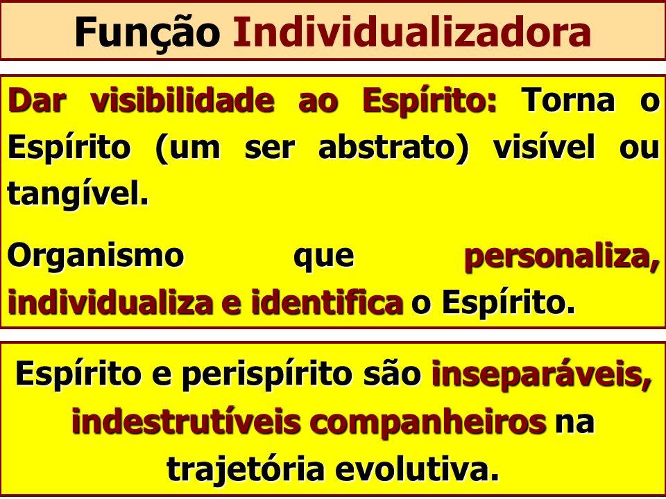 Função Individualizadora