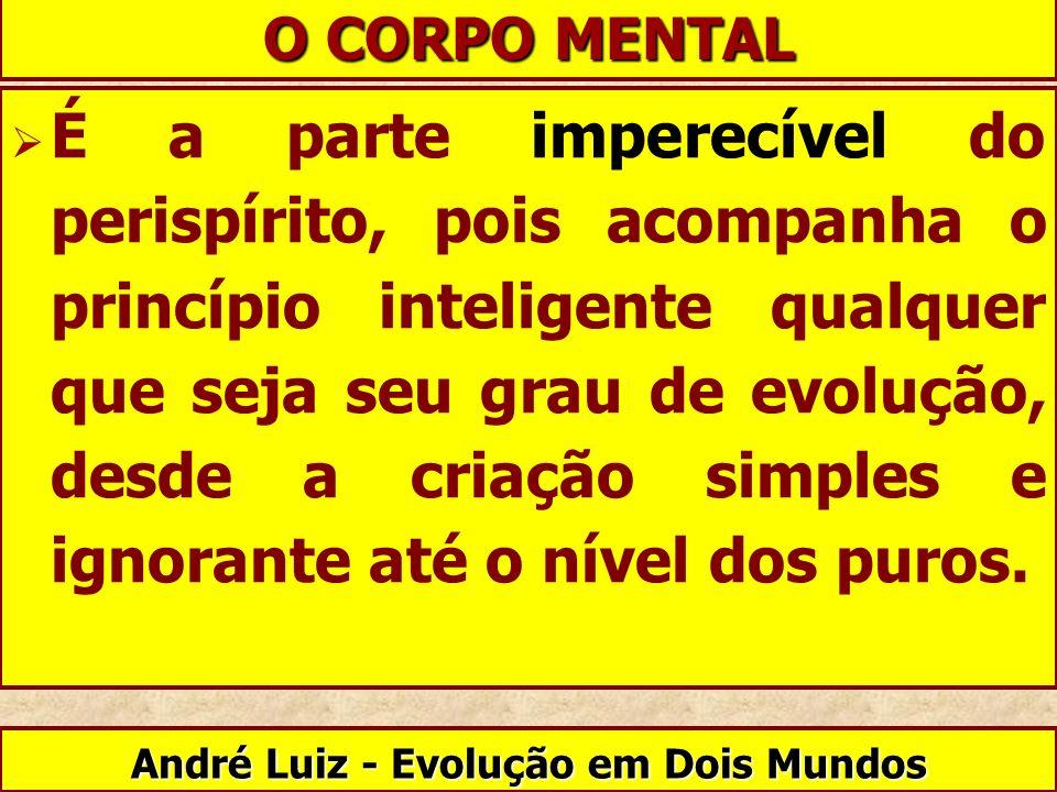 André Luiz - Evolução em Dois Mundos