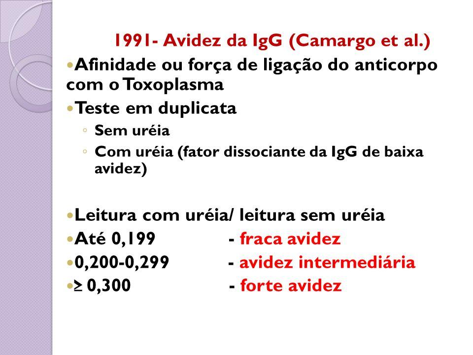 1991- Avidez da IgG (Camargo et al.)